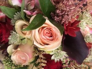 különleges színek, különleges virágok